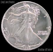 1989 American Silver Eagle Dollar BU 1oz Silver Uncirculated Coin
